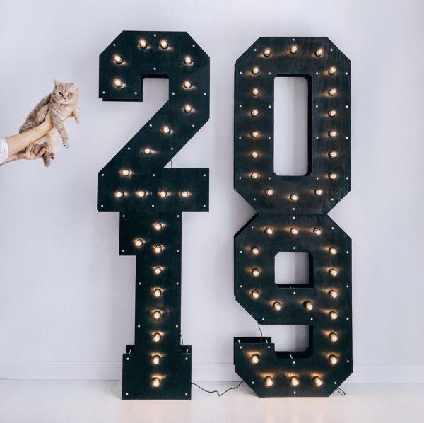 Фотозона с котом и деревянными цифрами 2019 с лампочками от Family Lights